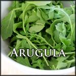 Arugula Text Border