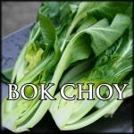 Bok Choy Text Border