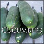 CucumberEdit