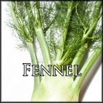FennelEdit
