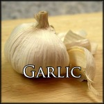 GarlicEdit