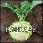 KohlrabiEdit