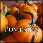 PumpkinsEdit