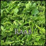 RaabEdit