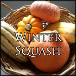 WinterSquashEdit